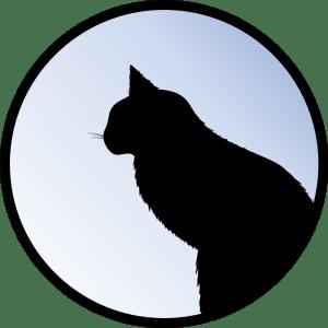 Ga Krafttiere Katze