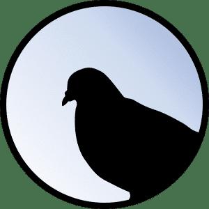 Ga Krafttiere Taube